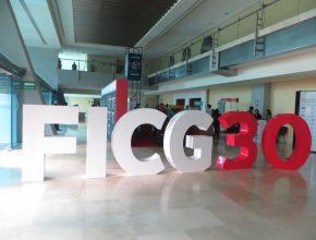 FICG 30