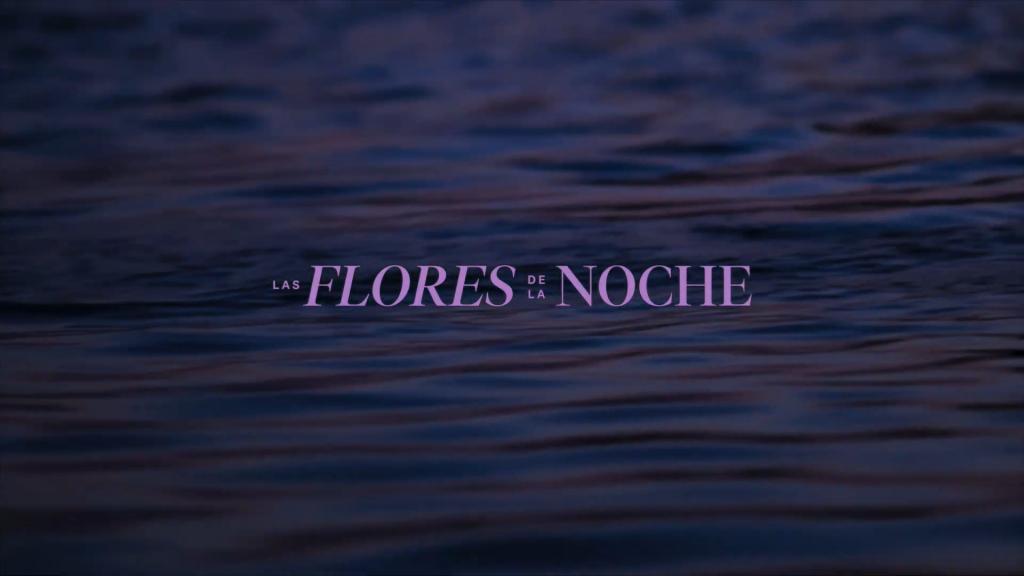 Galería Las Flores de la Noche